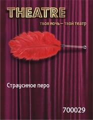 Перо страусиное TOYFA Theatre красное,40 см